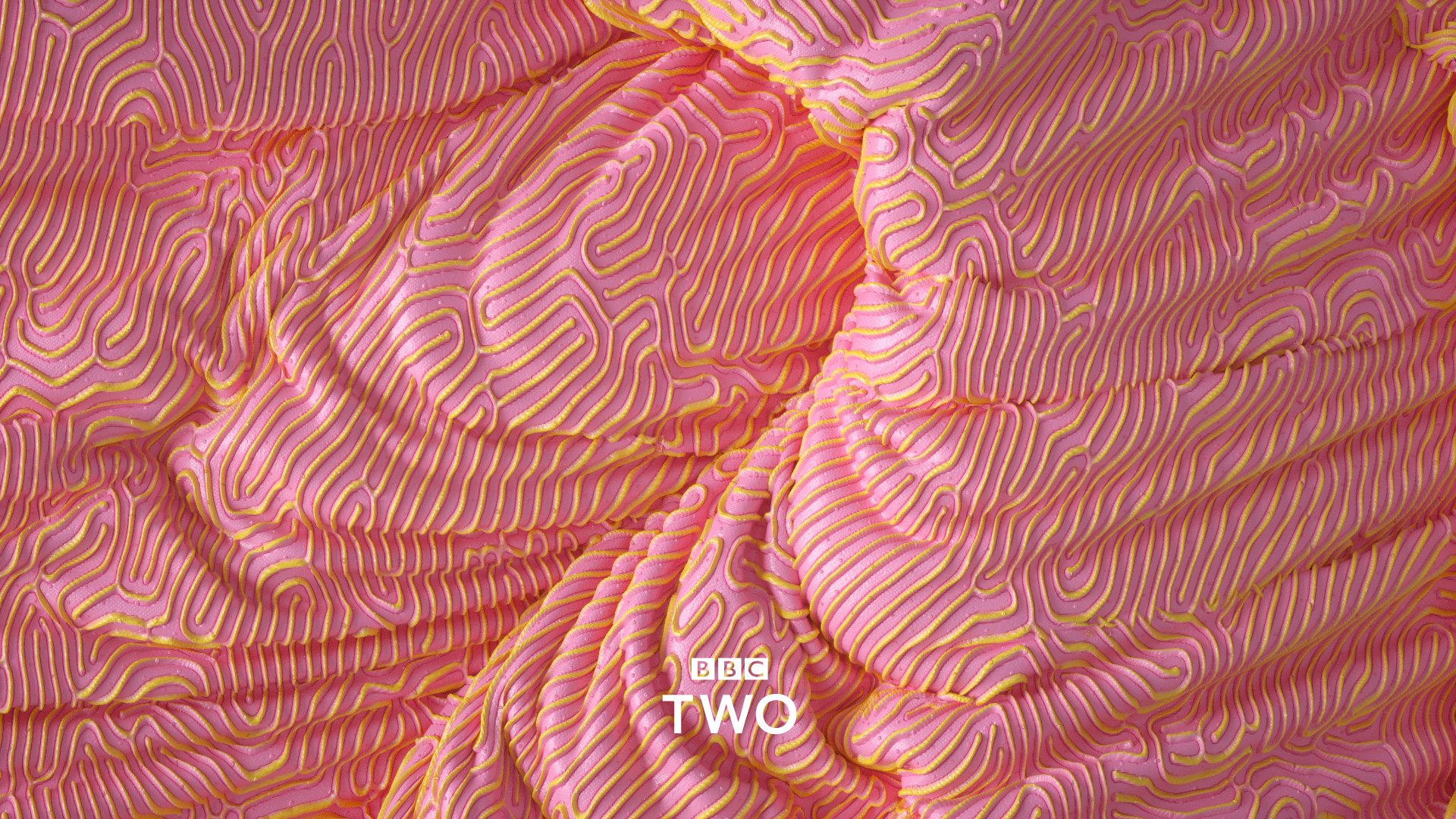 BBC_two_11